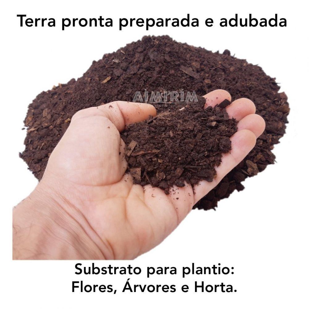 Terra Pronta Preparada Adubada para Plantio - 20 litros