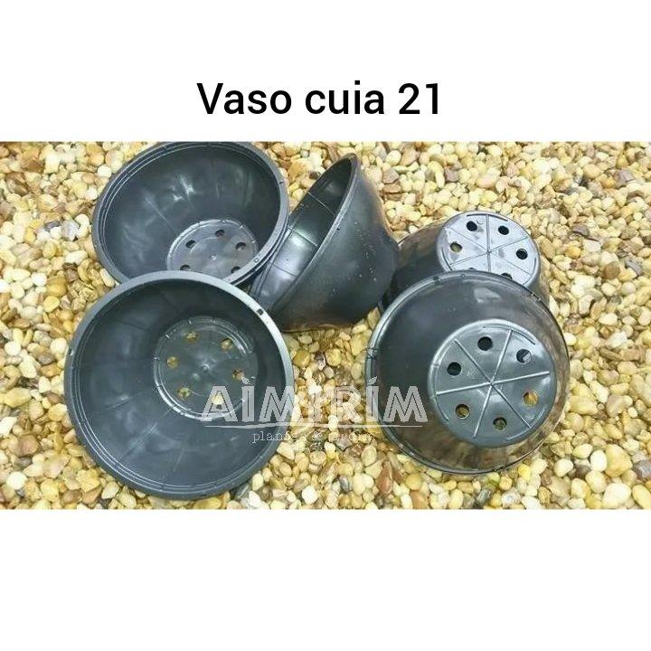 100 Vasos Cuia 21 para suculentas - Preto