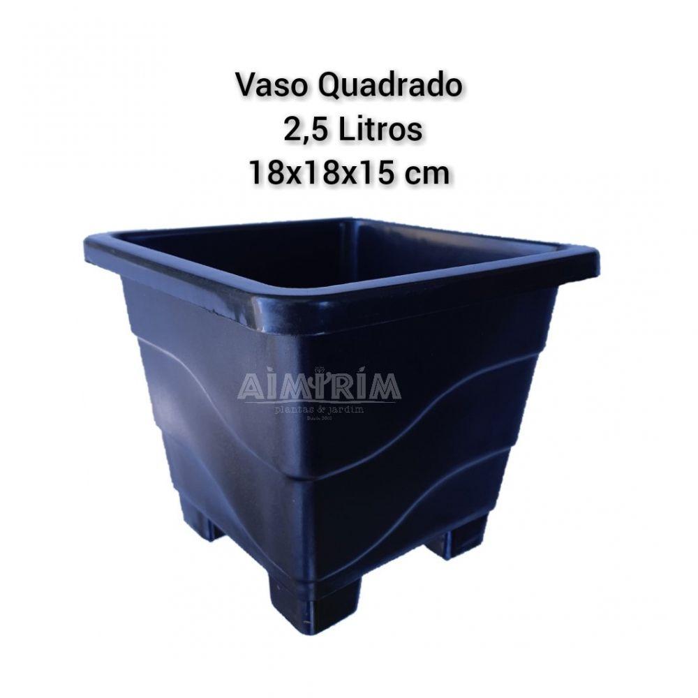 10 Vasos Quadrado Preto - 2,5 Litros