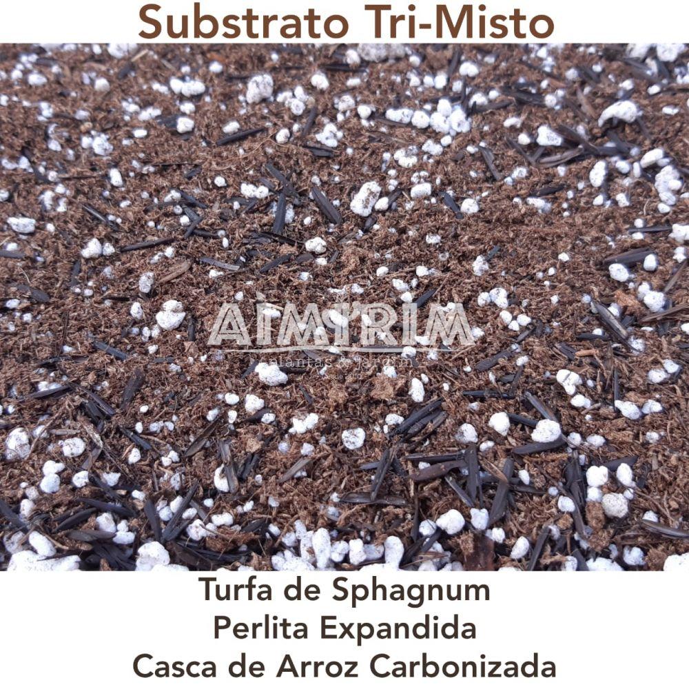 Substrato TRI Misto Para Enraizamento De plantas - 100 Litros