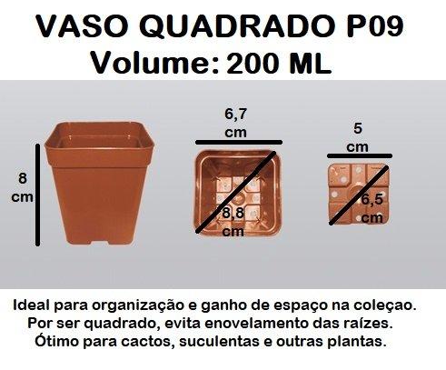 50 Vasos quadrado 9 - Preto