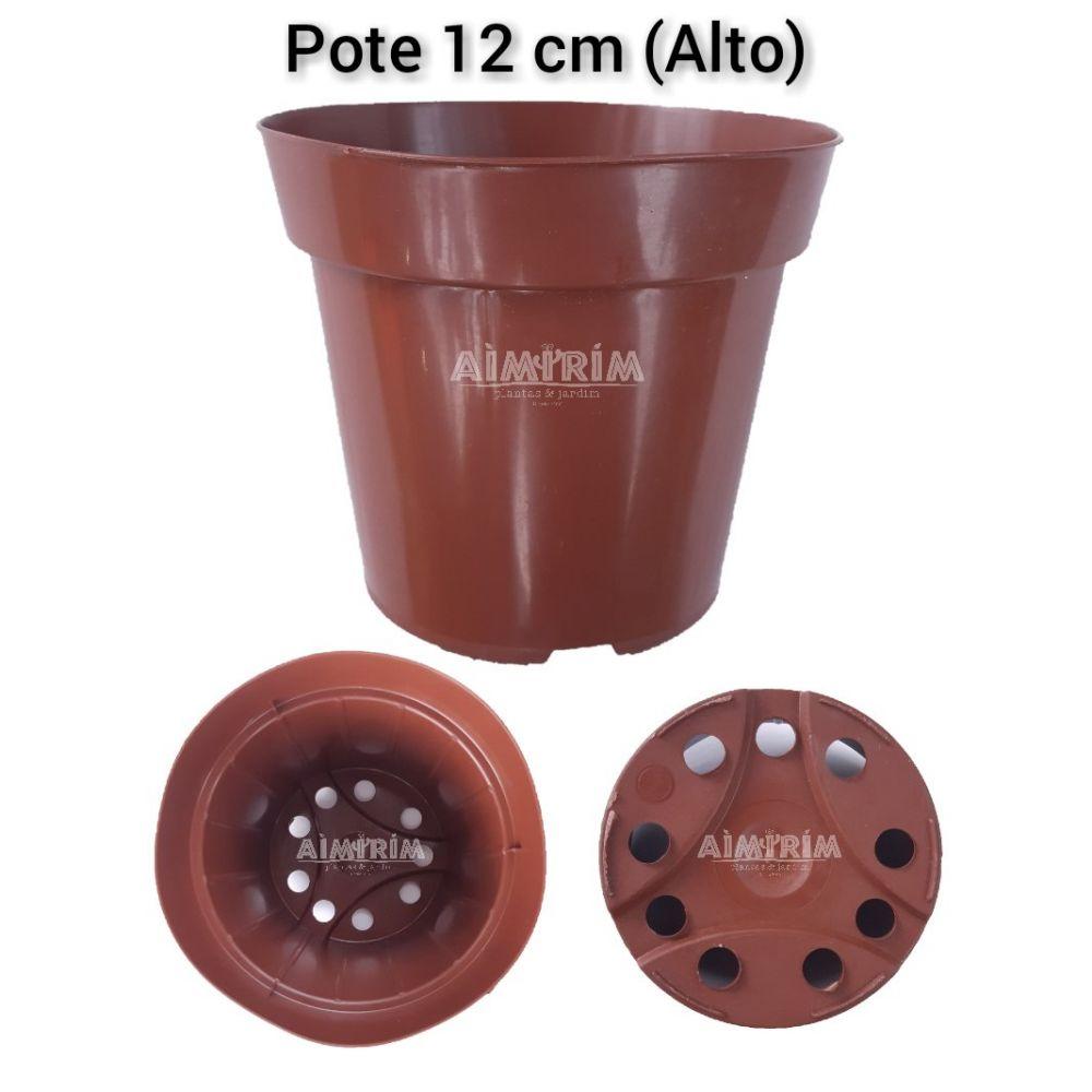 100 Vasos Redondo Pote 12 Alto Para Flores E Plantas  - Marrom