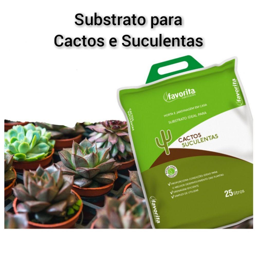 Substrato Ideal Para Plantas Cactos E Suculentas - 25 Litros